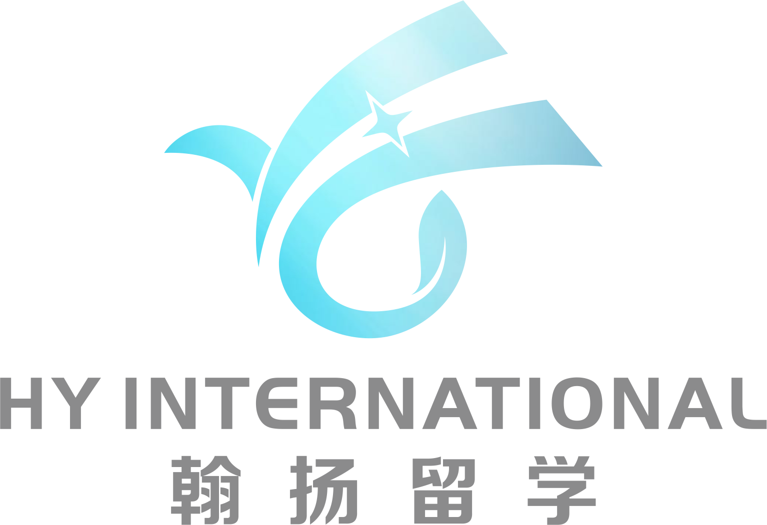 Hy International